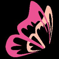 花蝶浏览器